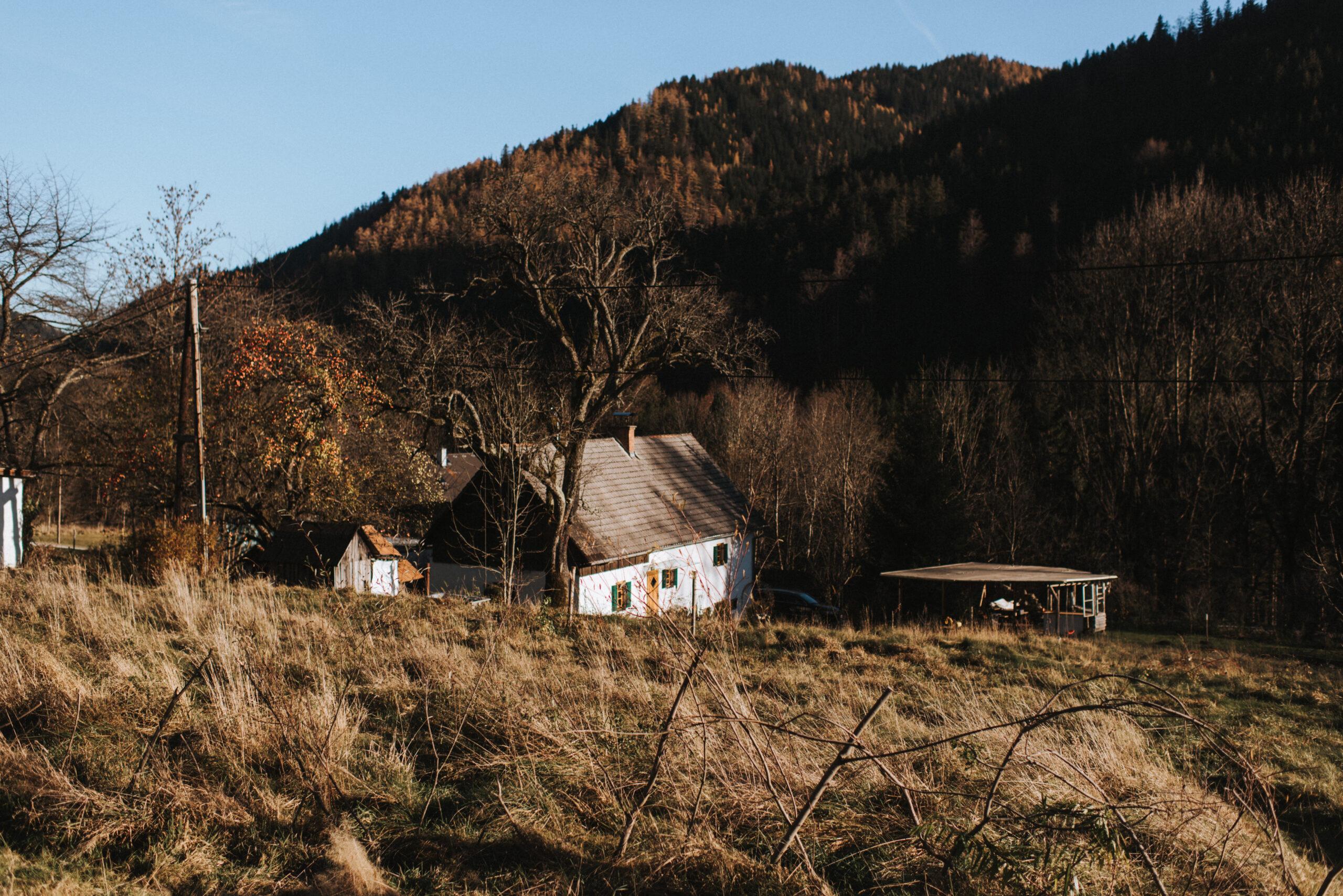 View More: https://katrinfineartphoto.pass.us/mongolischejurte